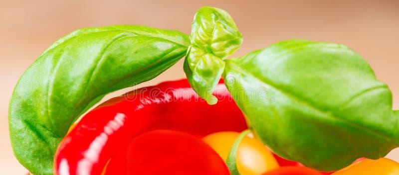 La albahaca hojea con los tomates de cereza y la pimienta de chile fotos de archivo libres de regalías