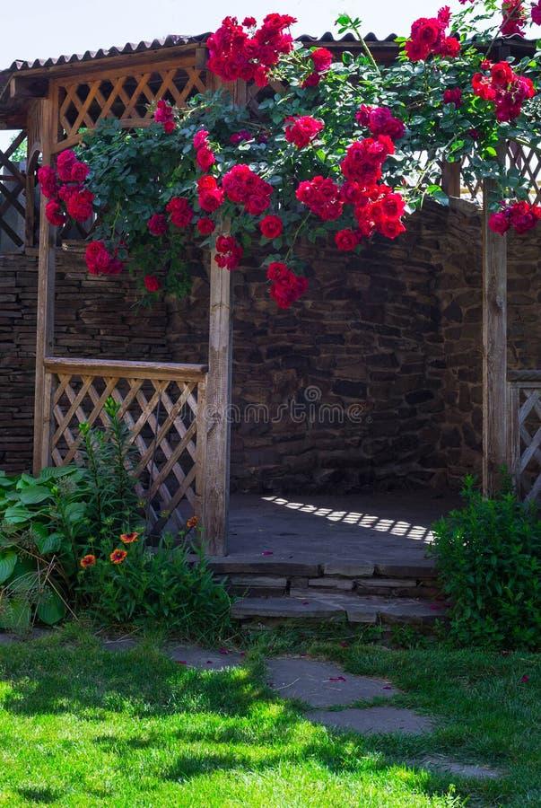 La alcoba en el jardín del verano con las flores hermosas de subir subió imagen de archivo