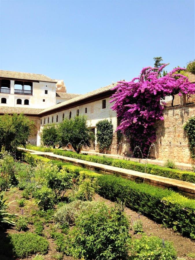 La Alhambra och dess förbluffa blommor, träd och denna härliga arkitektur arkivfoto