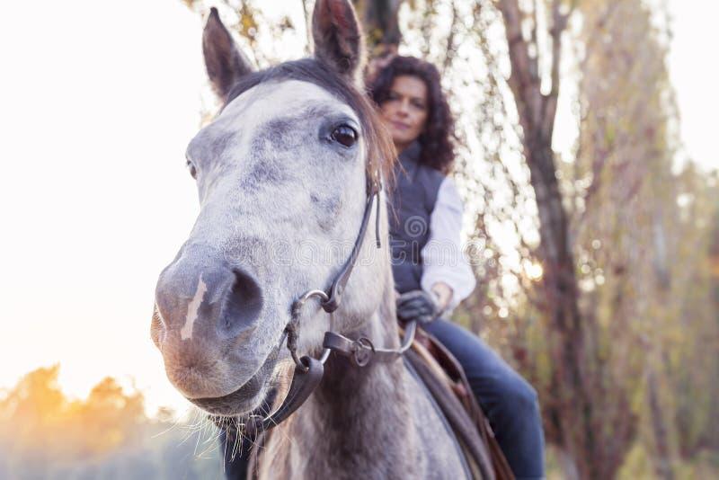 La amazona monta su caballo al país fotografía de archivo