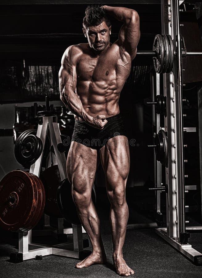 La aptitud formó al hombre del músculo que presentaba en gimnasio oscuro fotografía de archivo libre de regalías