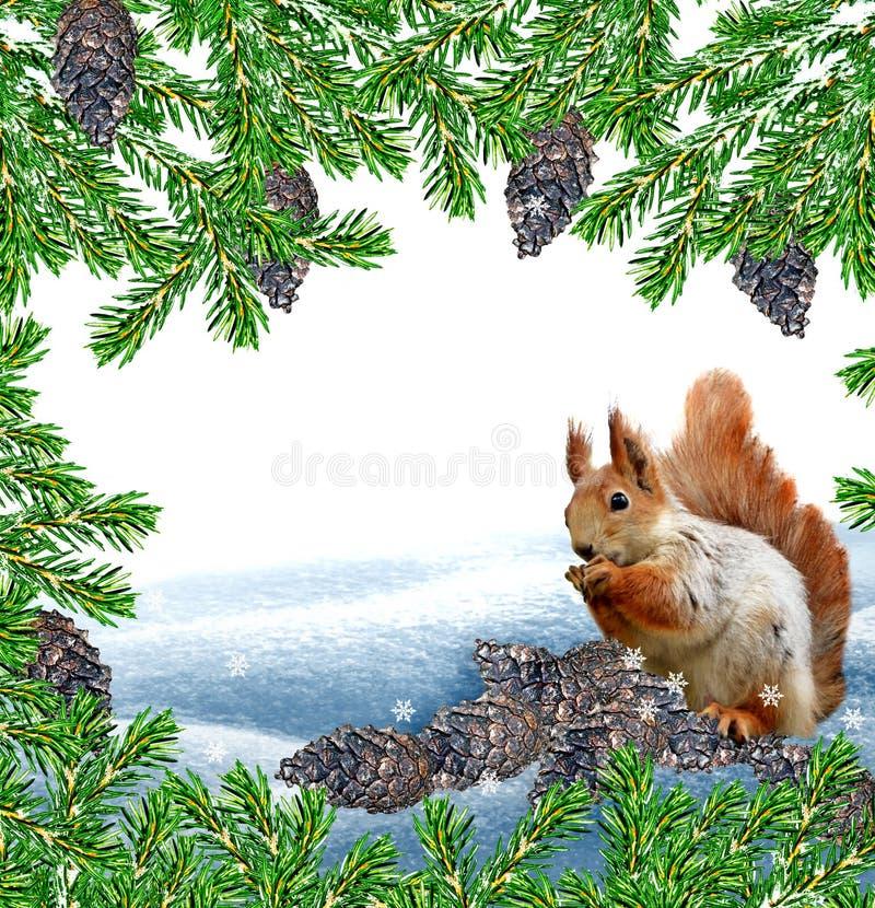 La ardilla en el bosque del invierno ilustración del vector