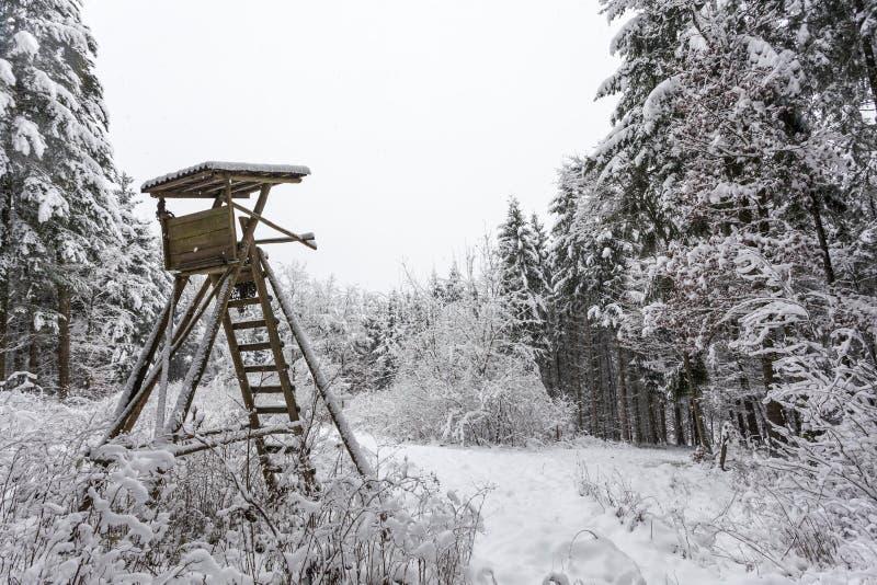 La búsqueda oculta en invierno imagen de archivo
