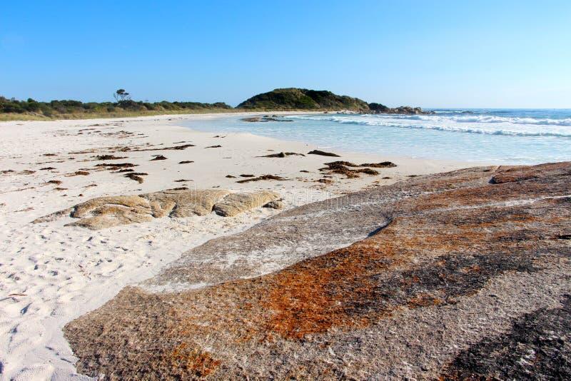 La baia di bello giorno dei fuochi oscilla giù sulla spiaggia fotografia stock libera da diritti