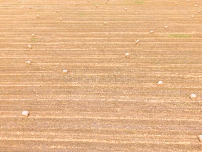 La bala de la visión superior hace heno en granja del maíz después de la cosecha en Austin, Tejas, imagen de archivo
