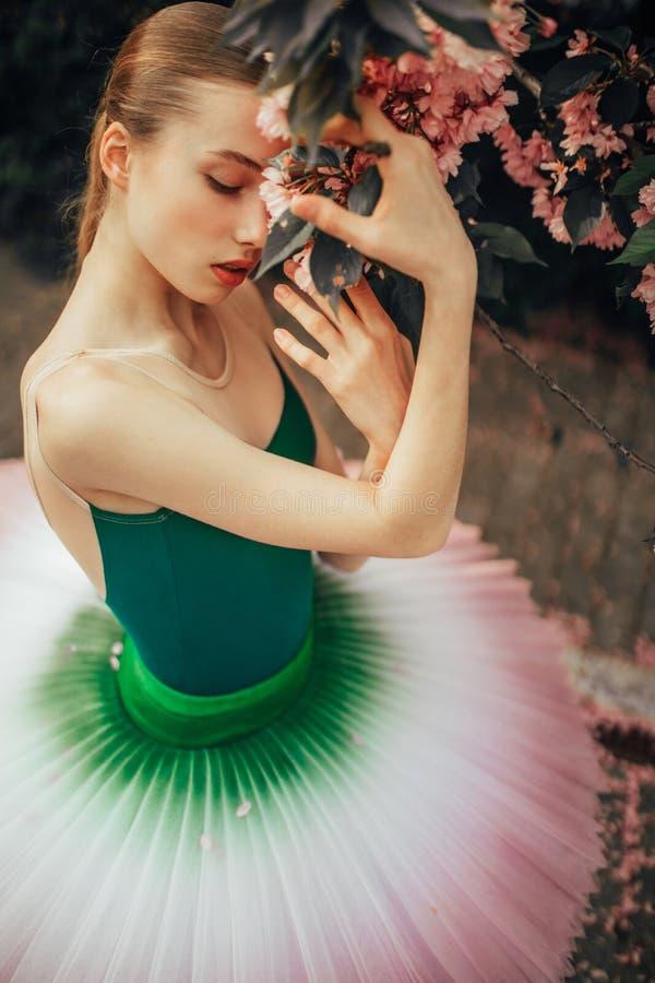 La ballerina è stante e godente accanto al ramo di fioritura dell'albero di sakura immagine stock