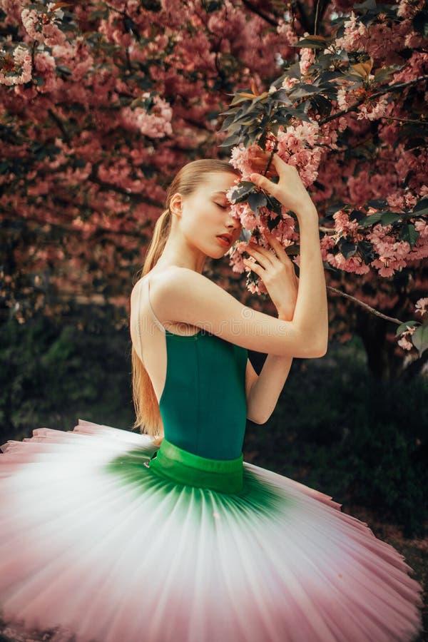 La ballerina è stante e godente accanto a fiorire l'albero di sakura nel parco fotografia stock libera da diritti