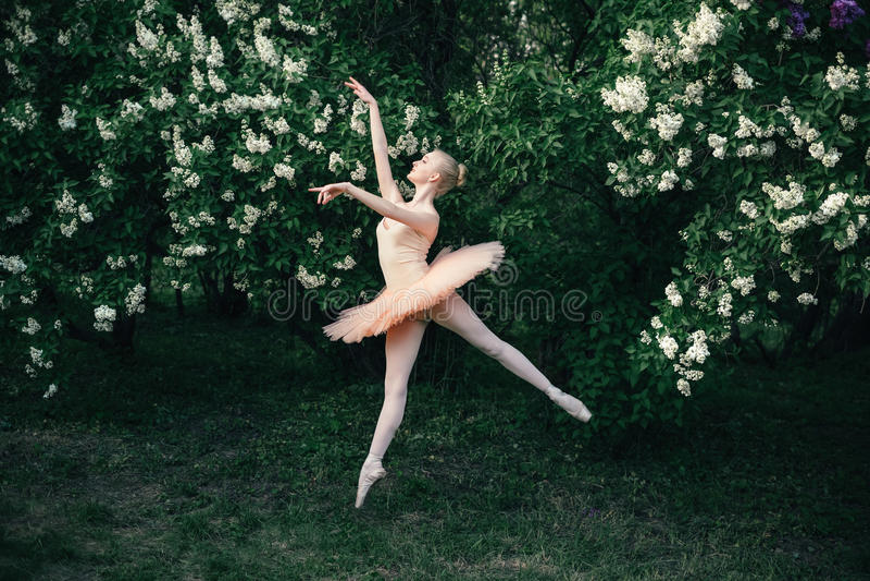 La ballerina che balla all'aperto il balletto classico posa nelle terre dei fiori fotografie stock