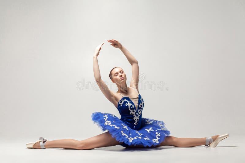La ballerine attirante avec le petit pain a rassemblé des cheveux portant la robe bleue photo stock