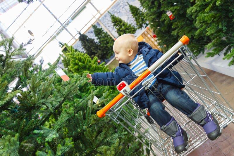 La bambina bionda si siede in un carretto del supermercato e seleziona un albero di Natale nel deposito fotografia stock