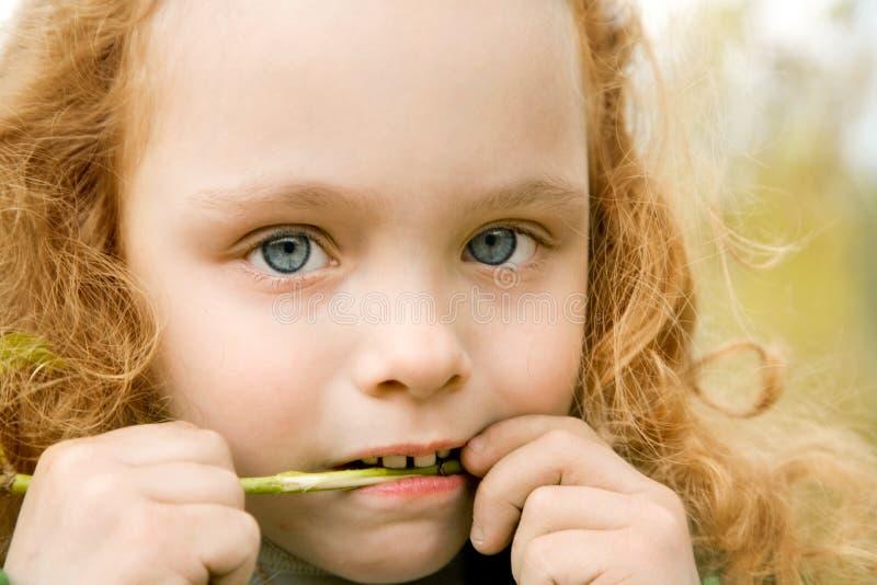 La bambina rosicchia un gambo verde fotografia stock