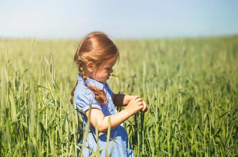 La bambina sta giocando nel campo un giorno soleggiato fotografia stock libera da diritti
