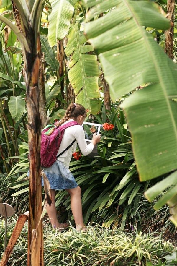 La bambina sta prendendo la foto con la compressa digitale sopra fotografie stock libere da diritti