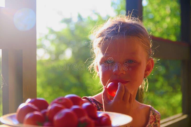 La bambina sta sedendosi ad una tavola su una veranda e sui pomodori freschi eatting fotografia stock libera da diritti