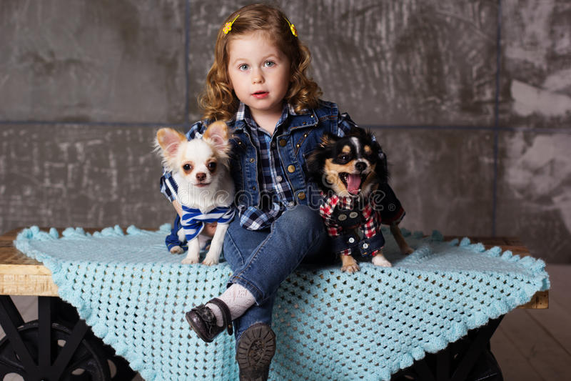 La bambina sta sedendosi con due cani di chuhuahua fotografie stock libere da diritti
