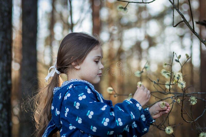 La bambina sulla natura esamina le piante fotografia stock