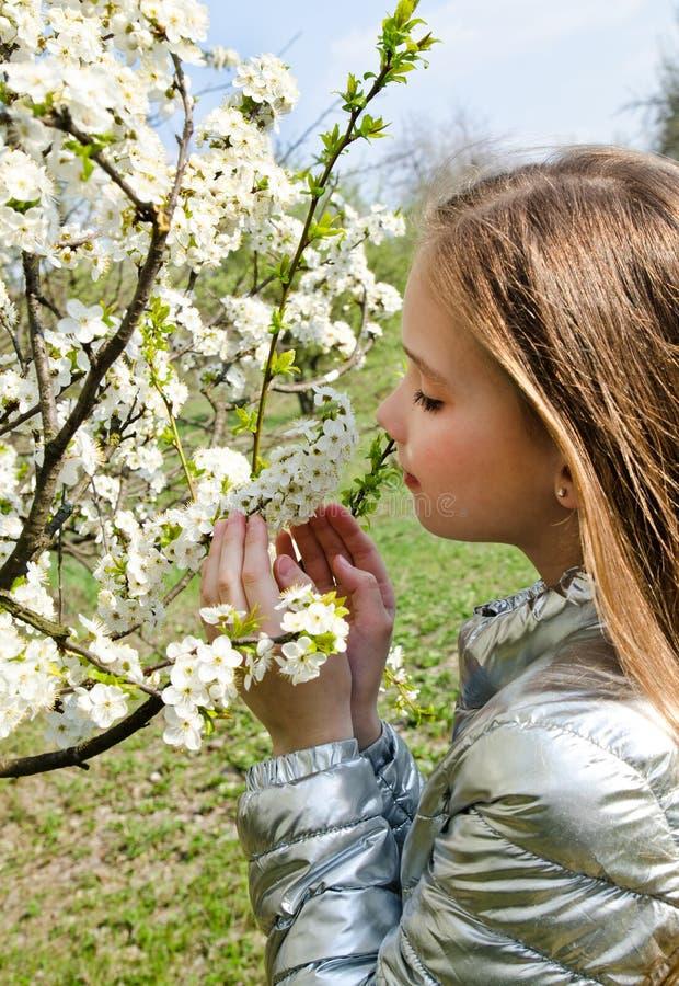 La bambina sveglia sta odorando i fiori del fiore nel giorno di primavera all'aperto fotografie stock libere da diritti