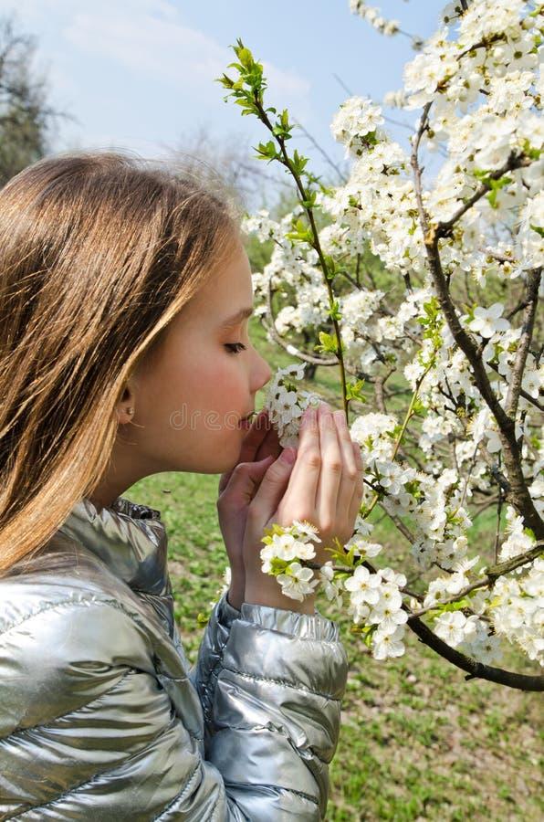La bambina sveglia sta odorando i fiori del fiore nel giorno di primavera all'aperto fotografia stock