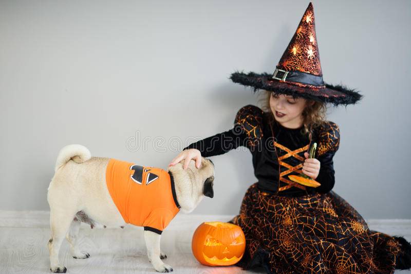 La bambina in un vestito del mago diabolico si siede sul pavimento e riveste di ferro un carlino in modo divertente immagine stock libera da diritti