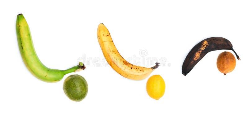 La banane de vert, mûre et putréfiée ensemble images libres de droits