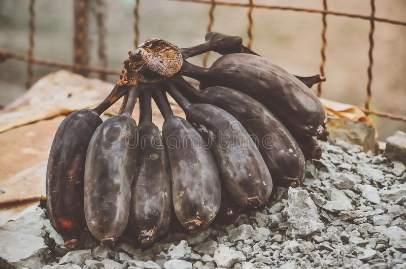 La banane noire a expiré pour la consommation image stock