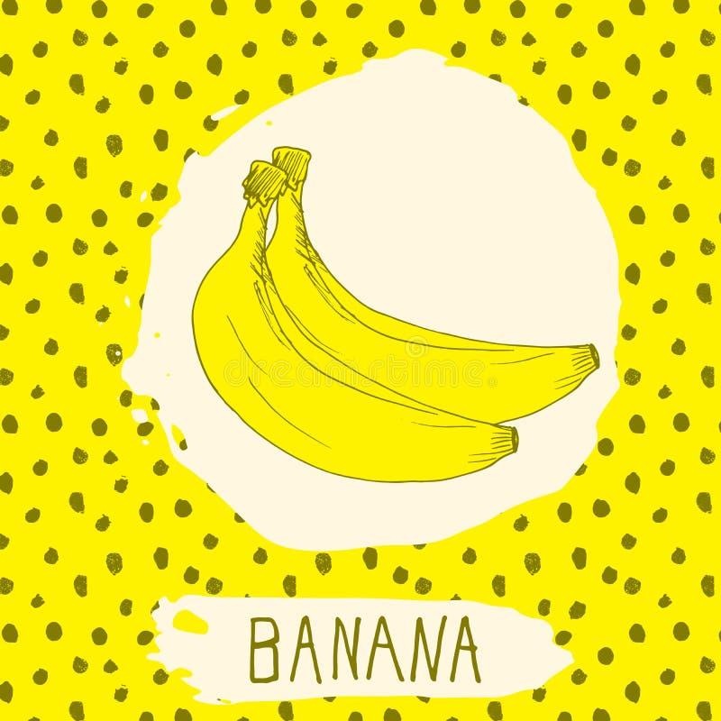 La banane tirée par la main a esquissé le fruit avec la feuille sur le fond avec le modèle de points Gribouillez la banane de vec illustration de vecteur