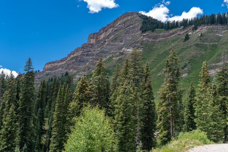 La Banca del carbone si passa le milione strade principali del dollaro di estate in Colorado San Juan Mountains fotografia stock libera da diritti