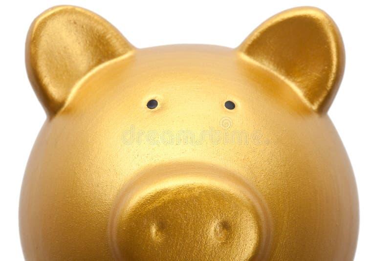 La Banca Piggy dorata fotografia stock