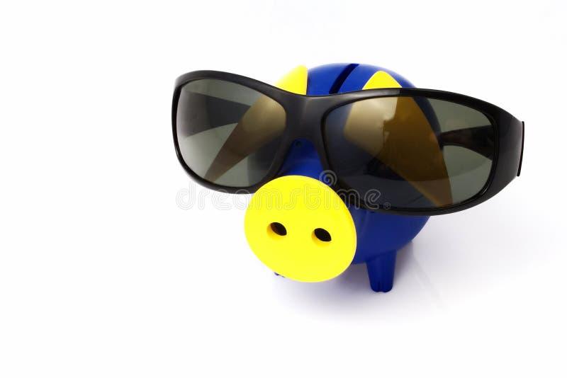 La Banca Piggy ed occhiali da sole fotografia stock libera da diritti