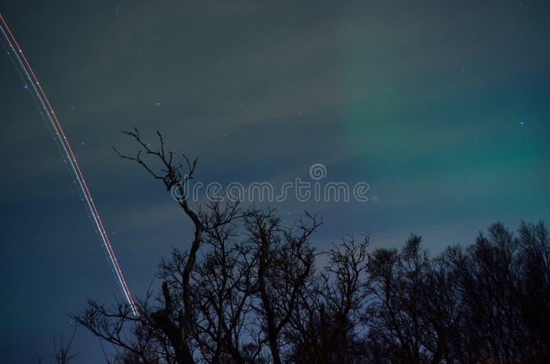 La banda leggera dell'aeroplano sulla stella ha riempito il cielo di aurora borealis e di alberi fotografia stock