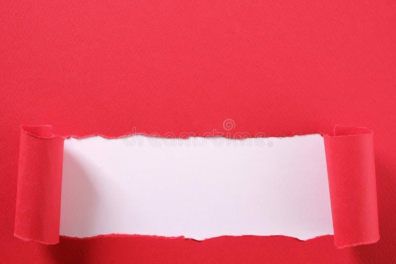 La bande de papier rouge déchirée a courbé le fond blanc de indication de rebord inférieur de bord image stock