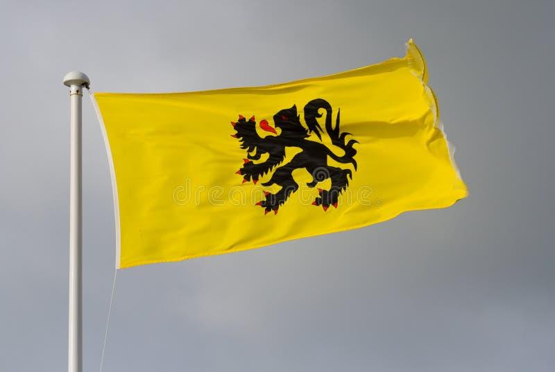 La bandera de Flandes imágenes de archivo libres de regalías