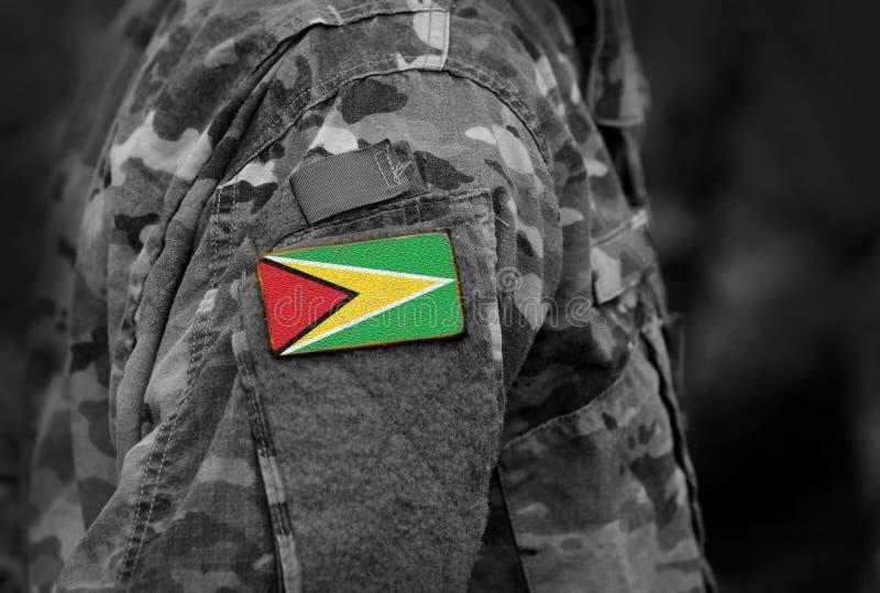 La bandera de Guyana en soldados arma Fla cooperativo de la República de Guyana imágenes de archivo libres de regalías
