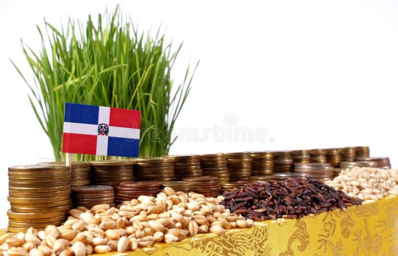La bandera de la República Dominicana que agita con la pila de dinero acuña foto de archivo libre de regalías