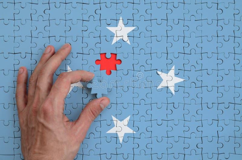 La bandera de Micronesia se representa en un rompecabezas, que la mano del ` s del hombre termina para doblar imágenes de archivo libres de regalías