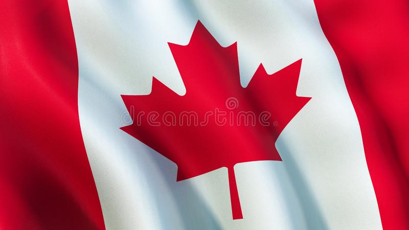 La bandiera del Canada, ondeggiante nel vento illustrazione vettoriale