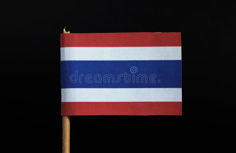 La bandiera nazionale del regno di Thailandia sugli stuzzicadenti su fondo nero Cinque bande orizzontali di rosso, bianco, blu, b immagini stock
