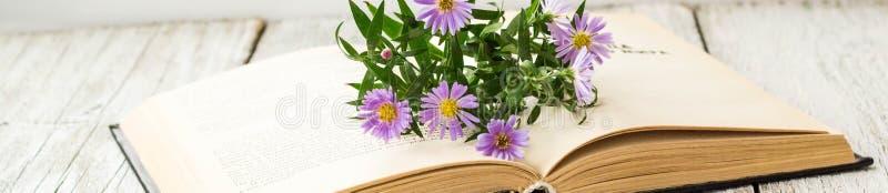 La bannière des asters de floraison de Vierge fleurit sur le livre ouvert sur la fenêtre Fond d'été d'automne photo stock