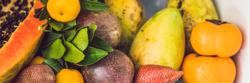 La BANNIÈRE, réfrigérateur ouvert de long format a rempli de fruits frais et de légume, concept cru de nourriture, concept sain d photographie stock libre de droits