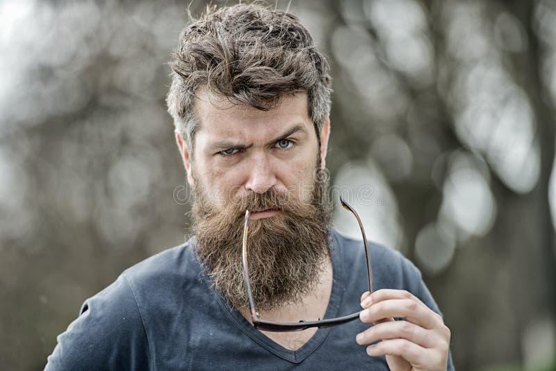 La barbe représentent la masculinité Le macho avec le visage strict de barbe et de moustache semblent les lunettes de soleil brut photo stock