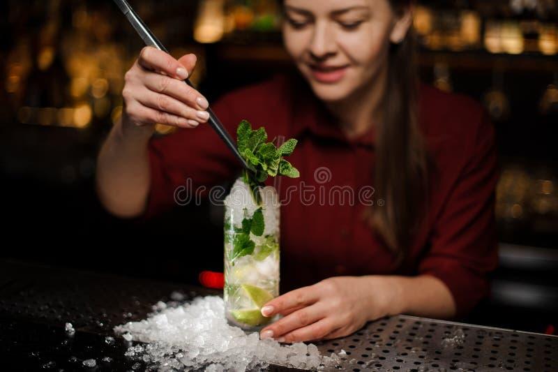 La barmaid remplit la conception du cocktail d'alcool de mojito photos stock