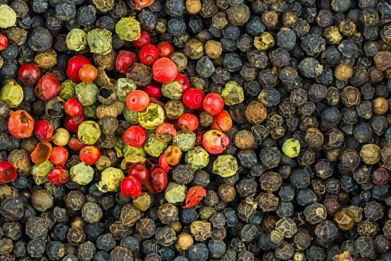 La base picante del fondo del fondo verde de los granos de pimienta rojos del negro gorshen la textura del primer del condimento  foto de archivo libre de regalías