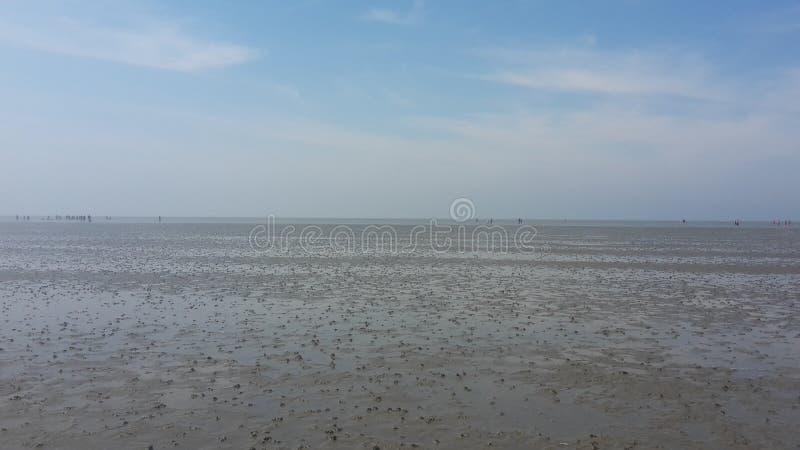 La bassa marea Baltico vede fotografie stock