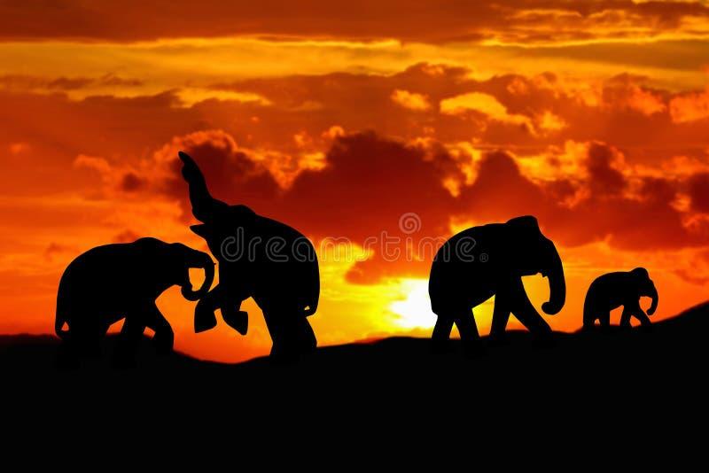 La bataille d'éléphant de silhouette et la faune d'animaux de troupeau de famille évacuent la marche au bel arrière-plan de couch images stock
