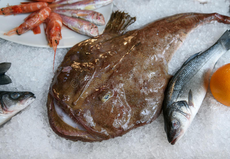 Le catalogue des botte pour la pêche