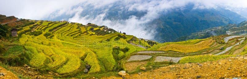 La beauté de la terrasse 1# de Hani photographie stock