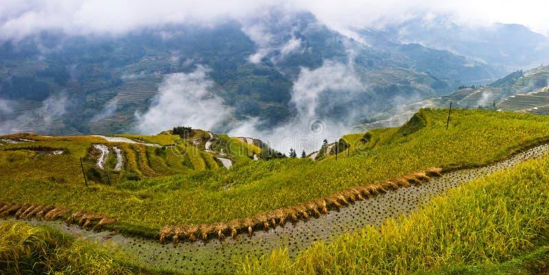 La beauté de la terrasse 2# de Hani photographie stock libre de droits