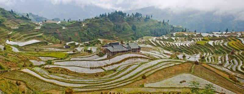 La beauté de la terrasse 3# de Hani images libres de droits