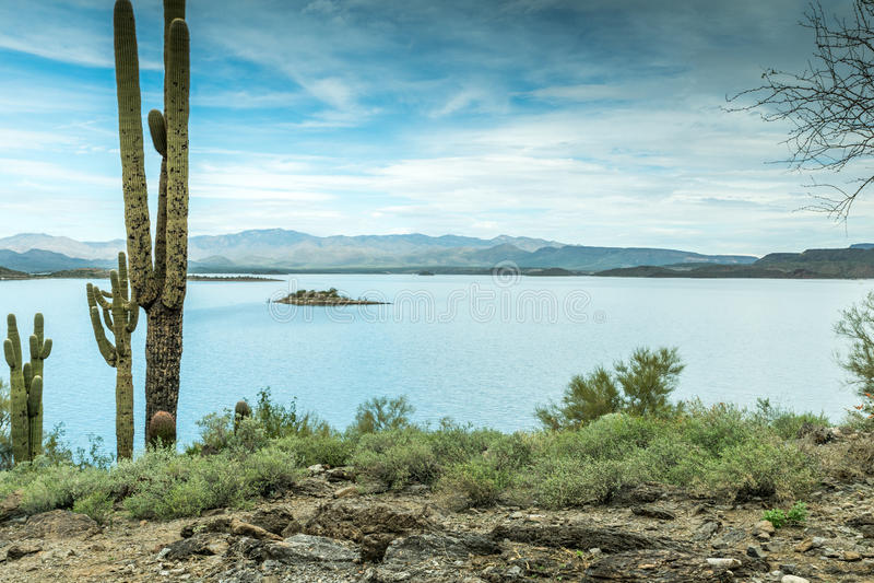 La beauté diverse du paysage de désert de l'Arizona photographie stock libre de droits
