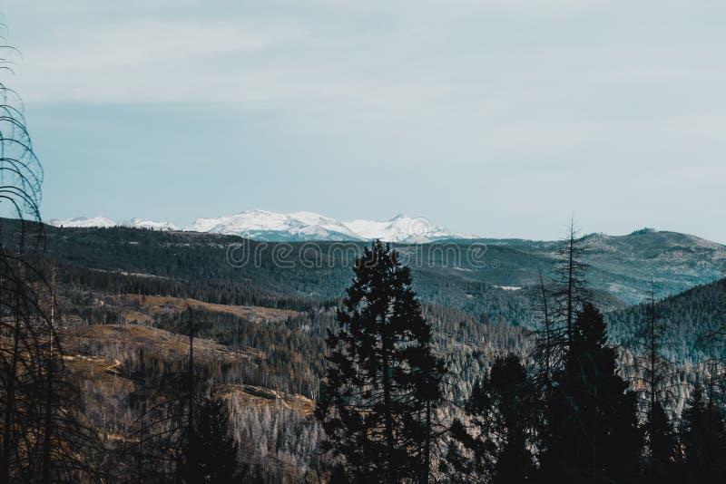 La beauté du lac Tahoe image libre de droits